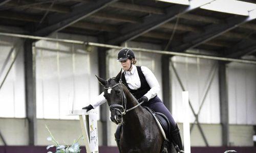 paardrijden-sociaal